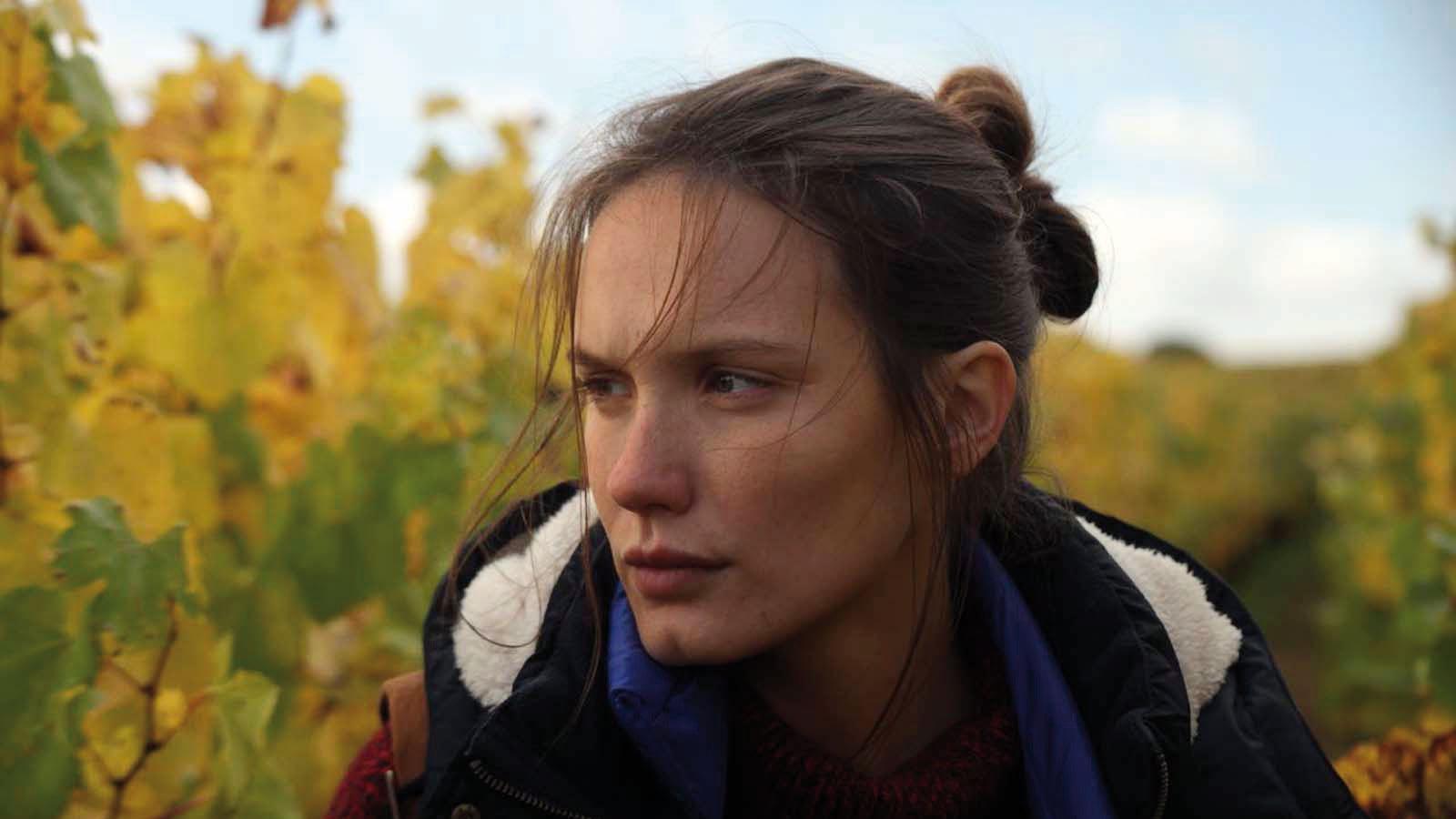 Film Wein Und Wind